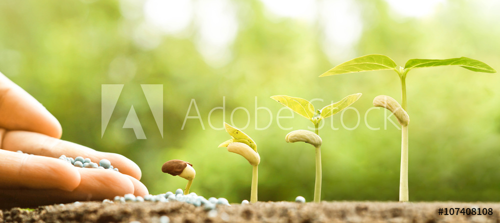 AdobeStock_107408108_Preview
