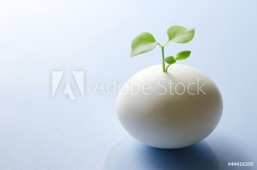 AdobeStock_44416355_Preview